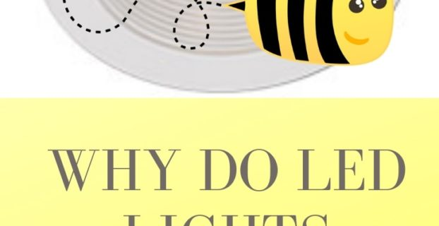 LED lights buzz