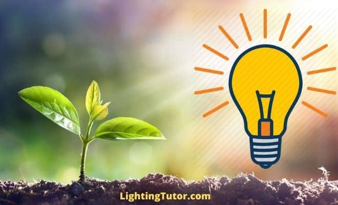 led lights as grow lights